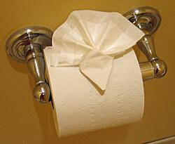 Toilet paper, Watkins Glen Harbor Hotel, Watkins Glen, New York (Photo by Susan McKee)