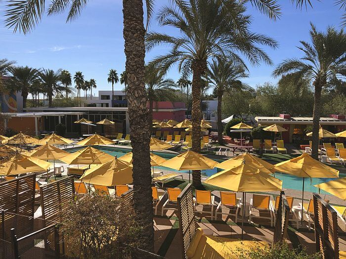 Hip Saguaro in Heart of Old Town Scottsdale