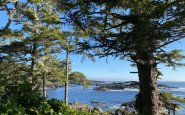Pluvio Restaurant + Rooms: A Fine-Dining Inn in Ucluelet, BC