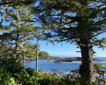 Wild Pacific Trail, Ucluelet BC Canada