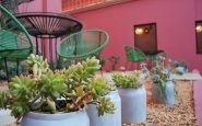 City Centro Oaxaca Hotel, A Colorful Oasis in the Heart of the City