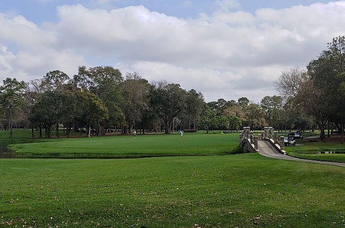 Copperhead golf course Innisbrook Palm Harbor